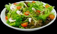 Crispy Salad C/Peixe Grelhado